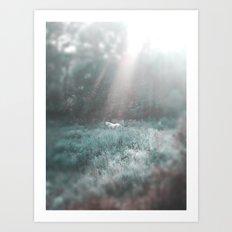 Pale Horse 2 Art Print