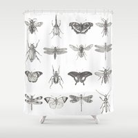 insects Shower Curtains featuring Insects by Elizabeth Clowes Illustration