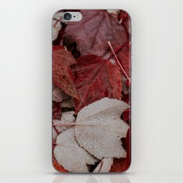 Autumn Leaves iPhone Skin
