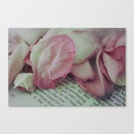 Rose Petals on Page Canvas Print