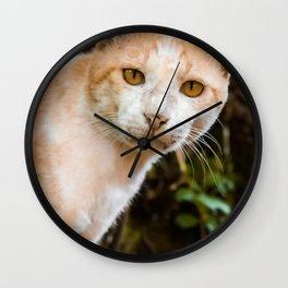 Cat by Prasanna Kumar Wall Clock