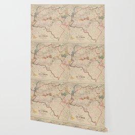 Vintage Map of Newton MA (1894) Wallpaper
