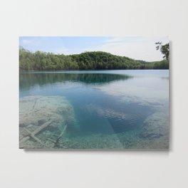 Fresh Water Reef Metal Print