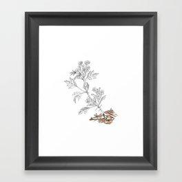 Agrion Framed Art Print