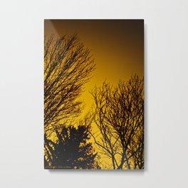 Fall Sunset Trees Metal Print