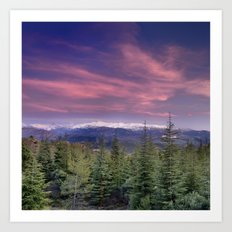 Pink sunset. Into the woods. Art Print