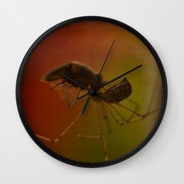 Preserve Wall Clock