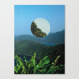'untitled' Canvas Print