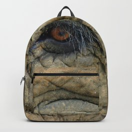 Through The Eye of the Elephant Backpack