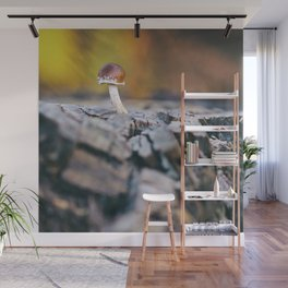 Autumn colors Wall Mural