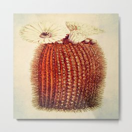 cactus with light Metal Print