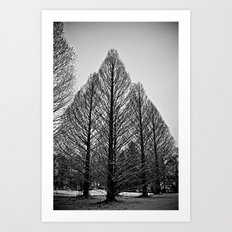 winter session Art Print