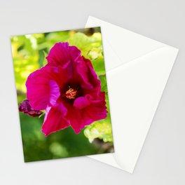 Jazzberry Jam Hibiscus Stationery Cards