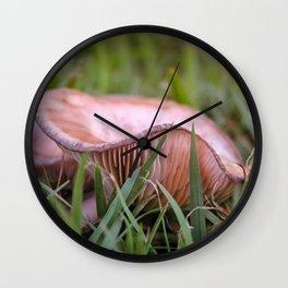 Beautiful fungi and grass Wall Clock