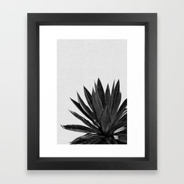 Agave Cactus Black & White Framed Art Print