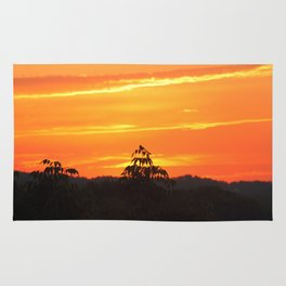 Red Sky Sunset with Red Robin Rug