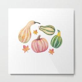 Autumn Gourds Metal Print