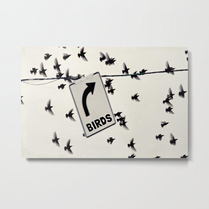 this way birds Metal Print