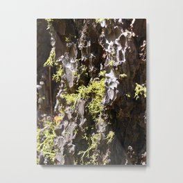 the pitted exterior Metal Print