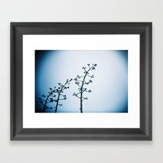 Alcatraz Plants Framed Art Print