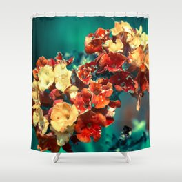 dry your eyes Shower Curtain