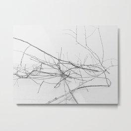 Dark Trees 2 Metal Print