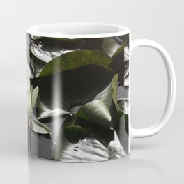 Lotus on the water Coffee Mug