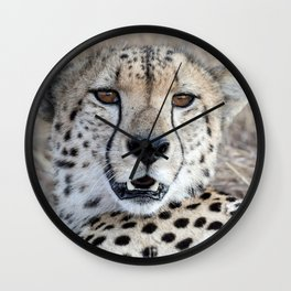 Cheetah Portrait Wall Clock