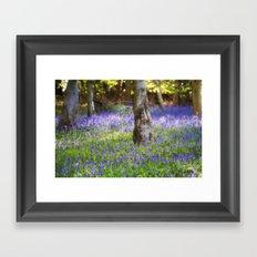 Bluebell Woodland Framed Art Print