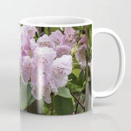 Beauty behind the fence Coffee Mug