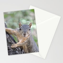 Who You Lookin' At? Stationery Cards