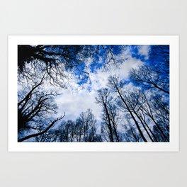 Reaching blue Art Print