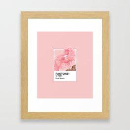 Pantone Series – Rose Quartz Framed Art Print