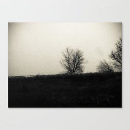Desolation 3 Canvas Print