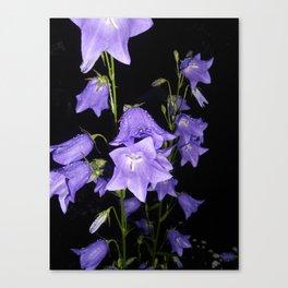 Flowers in Purple Canvas Print