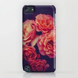 Treasure of Nature III iPhone Case