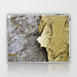 Chipped Laptop & iPad Skin