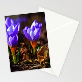 Concept flora : Purple love Stationery Cards