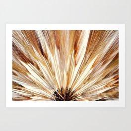 Wheat Sunburst Copper Art Print