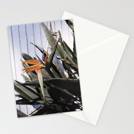 sun+flower Stationery Cards