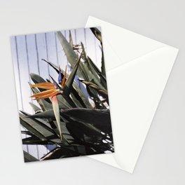 sun+flower Stationery Cards