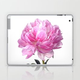 Pink peony illustration Laptop & iPad Skin