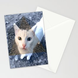 METRIC CAT Stationery Cards