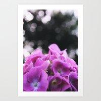 Pink Flowers and Bokeh  Art Print