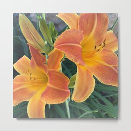 Garden Blooms - Orange Metal Print