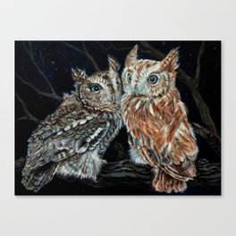 young love on a starry night - screech owls Canvas Print