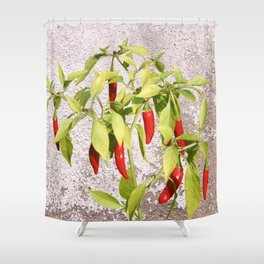 Thai Peppers Shower Curtain