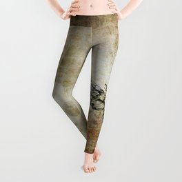 Moth Leggings