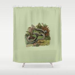 Snake Wildlife Illustration Shower Curtain