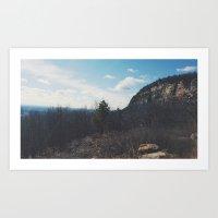 pine tree personals Art Print